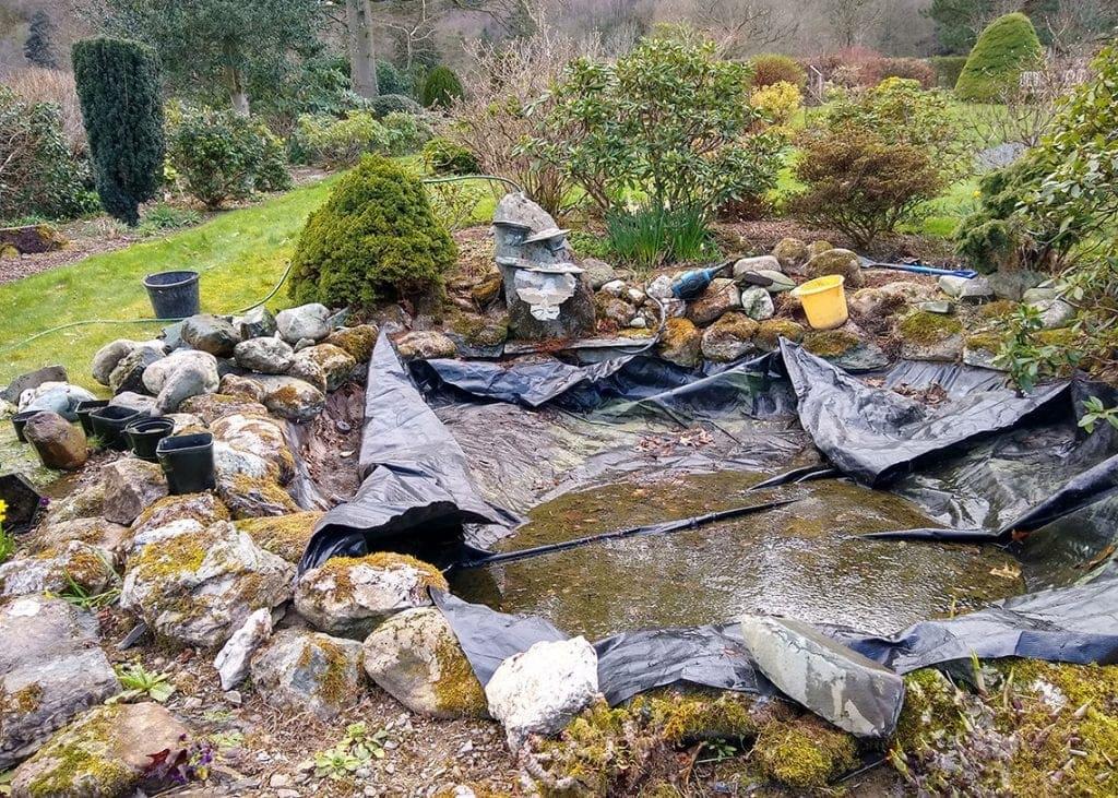Sue Grant's spring garden pond is a work in progress