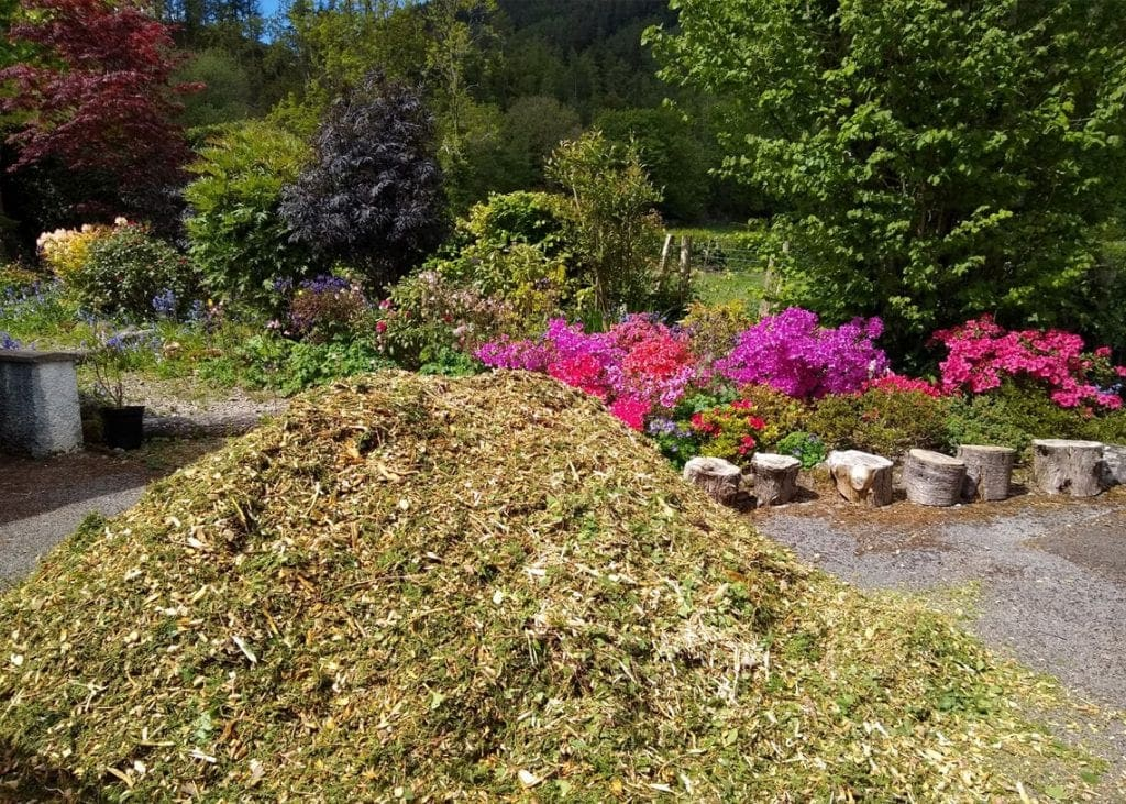 The mountain of wood chippings