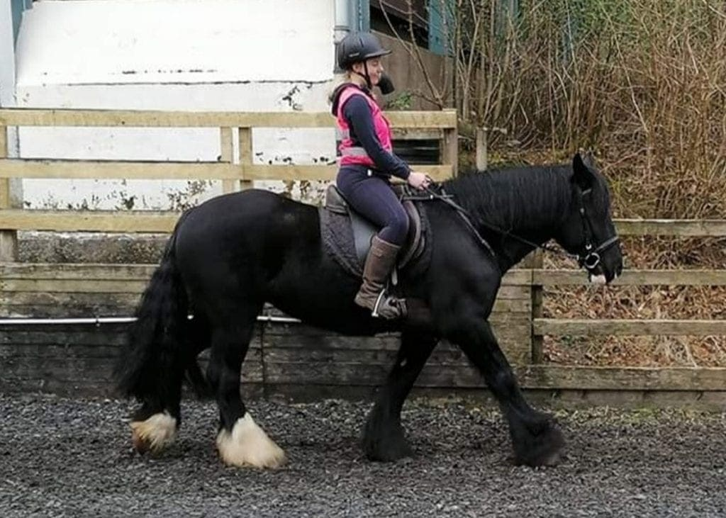 Here is Bethany riding Flow, one of the Calvert ponies.