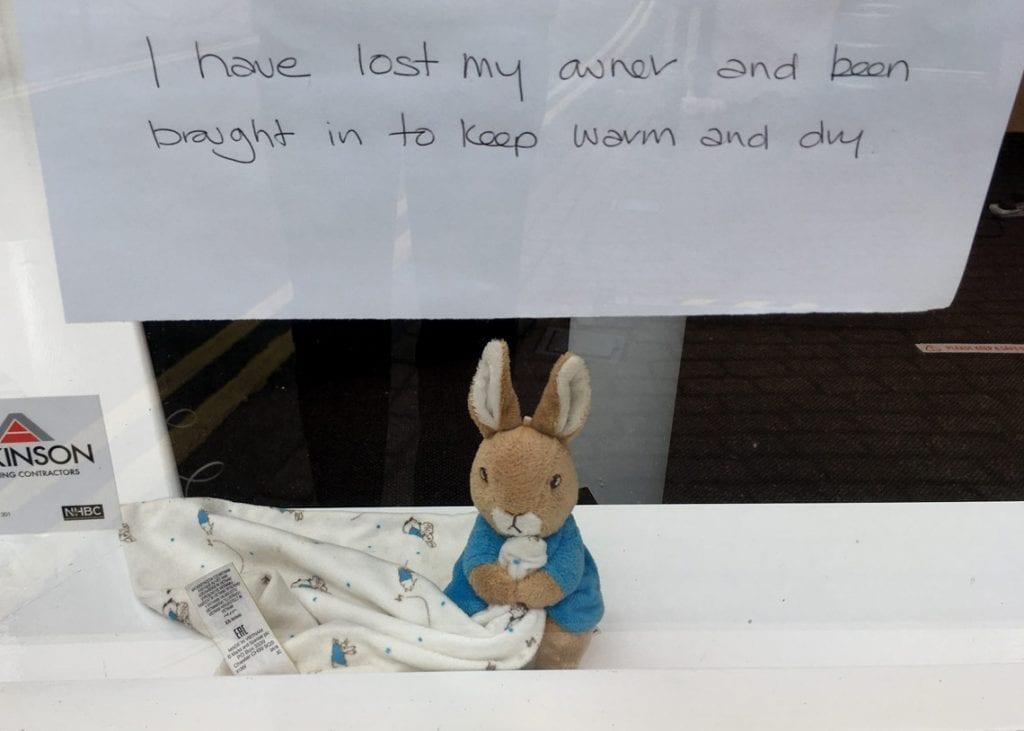 HELP find Peter rabbit's owner