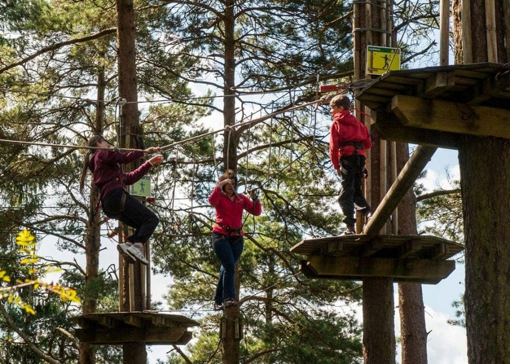 Go Ape at Whinlatter Forest Centre near Keswick will be reopening on Saturday 4th July.